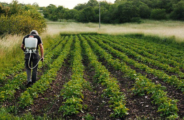 تفسير حلم الزراعة