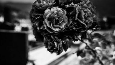 تفسير حلم صلاة الجنازة فى المنام