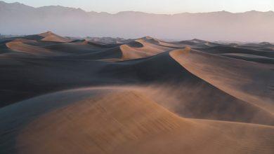 Photo of أحاديث عن الموت