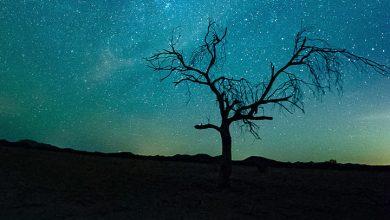 Photo of رؤية كلمة الله في المنام