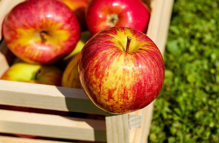 حلم التفاح الأخضر في المنام للمتزوجة