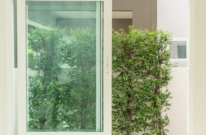 النافذة في المنام فهد العصيمي