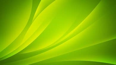 حلم اللون الأخضر في المنام للميت