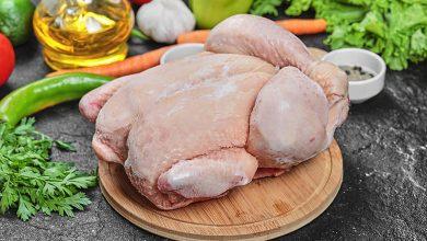 تفسير حلم الدجاج النيء المقطع للعزباء