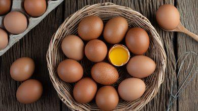 تفسير حلم جمع البيض للعزباء