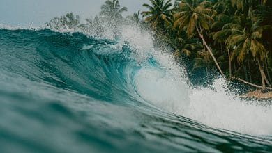 رؤية البحر الهائج من بعيد في المنام