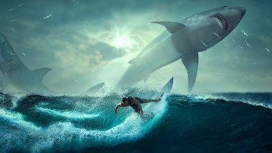 تفسير حلم سمك القرش ياكل شخص آخر